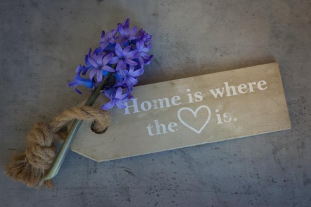 hyacinth-1369537_640