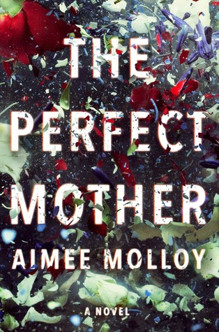 The Perfect Mother cover