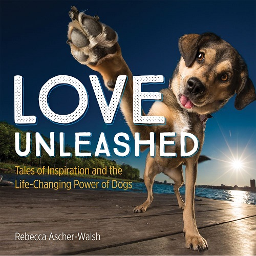 Love Unleashed cover